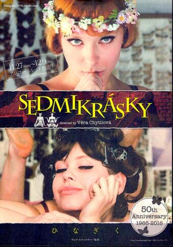 Summer on the Silver Screen: Sedmikrásky (1966)